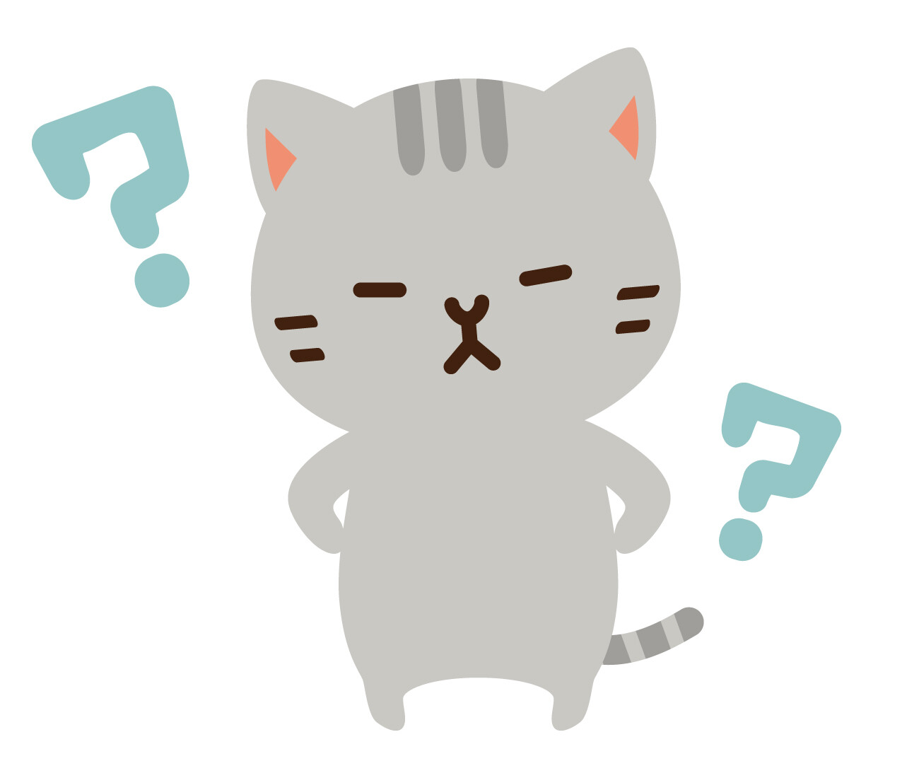 Коты картинки с вопросами